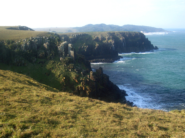 Morgan Bay cliffs