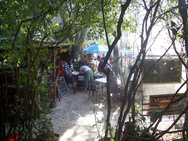 Yellowwood Forest gift shop and tea garden