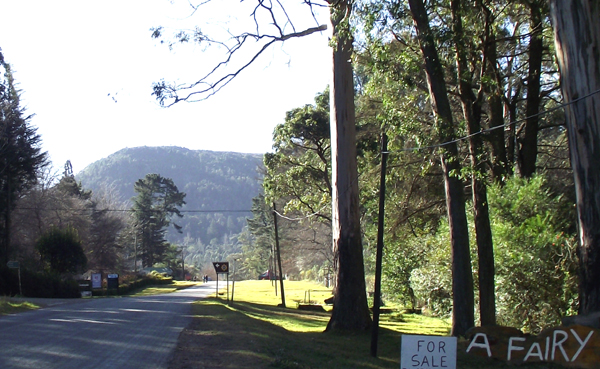 main road in Hogsback