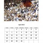 Free 2014 calendar  - April 2014