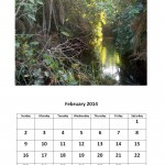 Free February 2014 calendar Morgan Bay