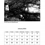 Free January 2014 calendar markets