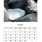 Free 2014 calendar July month