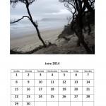 June 2014 calendar Morgan Bay