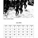 Free 2014 calendar June