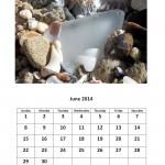 Free 2014 calendar - June 2014