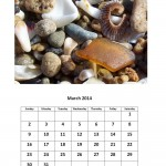 Free March 2014 calendar sea glass