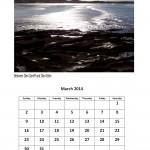 March 2014 free calendar