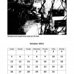 Free 2014 calendar single month page October