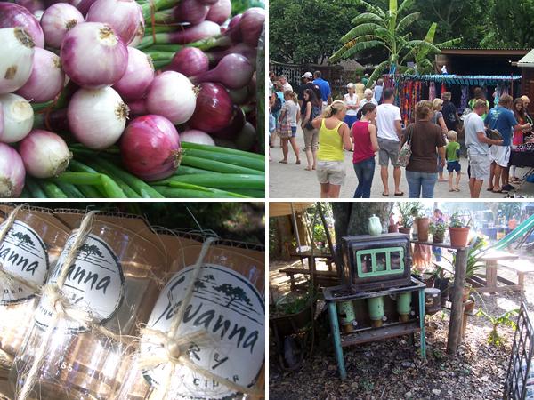 Farmers Market and Craft Market Morgan Bay
