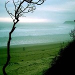 beautiful Morgan Bay evening at the beach