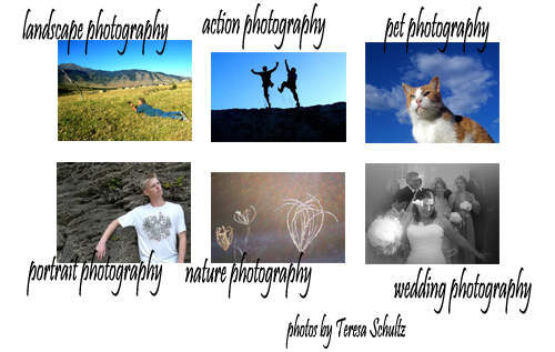 different kinds of photography like landscape photography, action photography, pet photography, portrait photography, nature photography and wedding photography