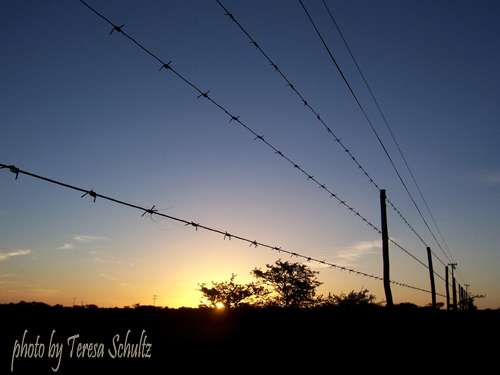 fence and sunset Brakfontein