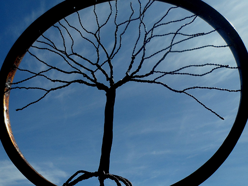 gifts for everyone at Christmas markets in South Africa - gifts for your entire living family tree, like this lovely wire tree of life in a bicycle wheel rim at a market in East London in South Africa !